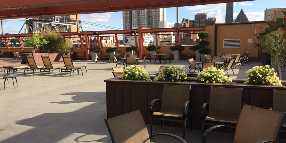 Rooftop Patio Garden in NYC